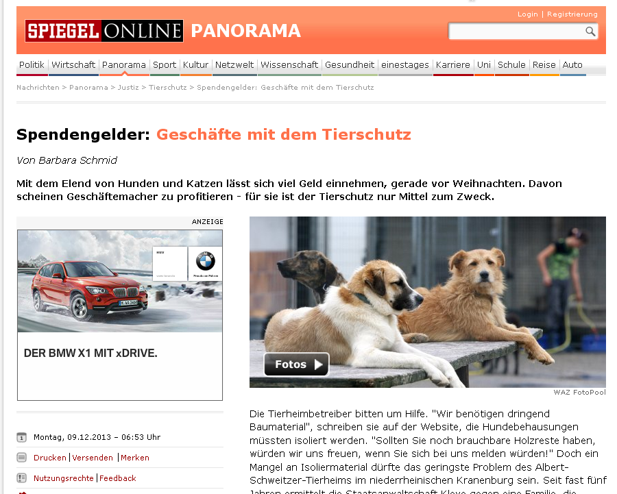 Câinii de rasă - o sursă garantată de venit | Afaceri