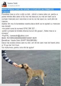 Ioana Sotir OK_n