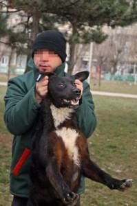 Mihai Grigorie pe vremea când era hingher.