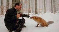În România mileniului III, faptul că mai multe vulpi aleg să își găsească adăpost în împrejurimile unui sat oarecare sau […]