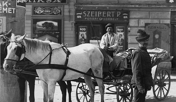 Deznodământul Primului război mondial a dus la destrămarea Imperiului Austro-Ungar în 31 octombrie 1918. Este momentul când fiecare naţiune a […]