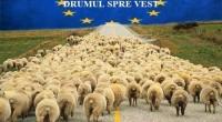 PROHODUL ROMANIEI     Lăsați agenții lui Soros să iasă în stradă! Stimati manipulati, Am fost loviti, sistematic, […]