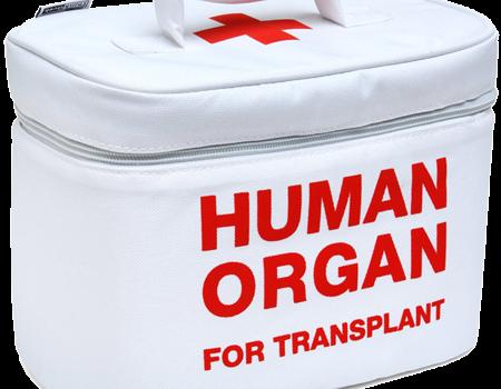 Cooperativa morţii: o crimă în numele Colectiv. Un bărbat viu a fost hăcuit de organe fără să-şi fi dat […]