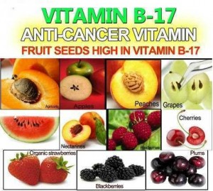 Anti-Cancer-Vitamin-Vitamin-B17