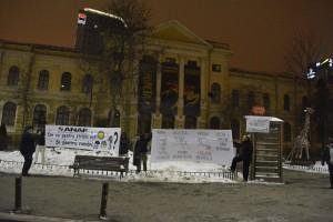 banner anaf