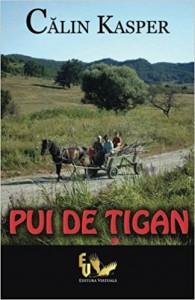 """Una din cele două cărți scrise de Călin Kasper. După titlu, """"Pui de țigan"""", pare să fie o autobiografie."""