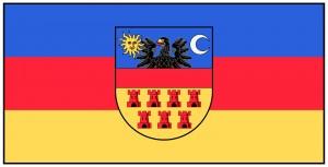 """Ordinea culorilor pe așa-zisul """"steag al Transilvaniei"""" este albastru-roșu-galben, nu galben-roșu-albastru cum """"greșește"""" intenționat Sabin Gherman în scopul manipulării naivilor."""