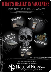 Infographic-Whats-Really-In-Vaccines