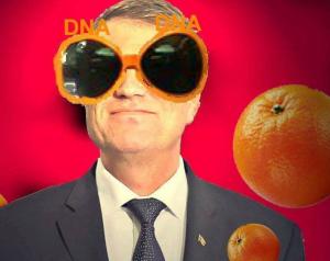portocala_klaus
