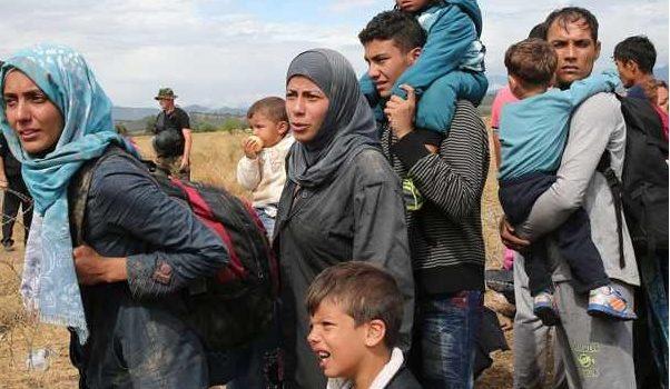 Câți migranți a adus Iohannis pe șest din Germania în urma înțelegerii secrete cu Merkel? Aflăm de musulmani și […]