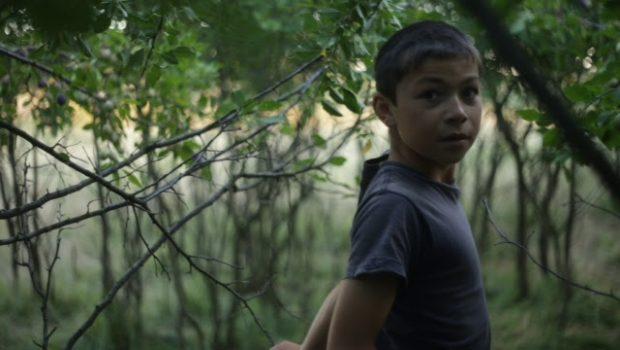 Realizat în cadrul atelierului de film documentar Aristoteles Workshop, anul trecut, Wild Berries a fost recent selecționat de Doclisboa, […]