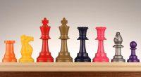 Jocul de șah în occident… deocamdată Predaușah la mai multeșcoli […]