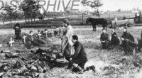 Crime, jafuri, torturi, copiii dintr-un spital aruncați pe geam, profanări de biserici: Atrocitățile comise asupra populației și armatei române […]