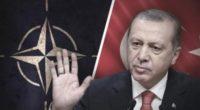 Turxit  Războiul dintre […]