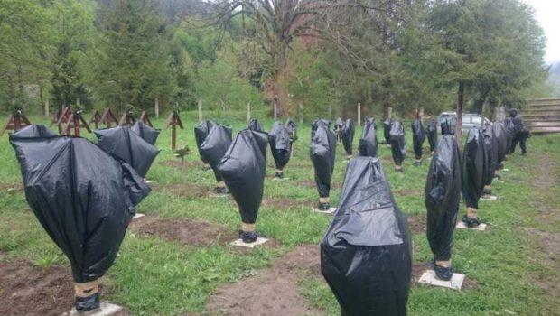 Gânduri despre Cimitirul Valea Uzului     […]
