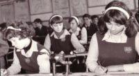Sistemul de învăţământ comunist avea un ciclu primar, unul gimnazial, două trepte, a căror picare echivala cu o reorientare […]