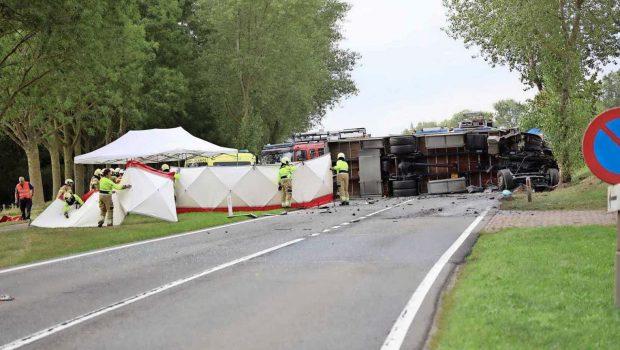Sinucidere accelerată și mediatică Olandezul suspectat că a ucis-o pe fetița de 11 […]