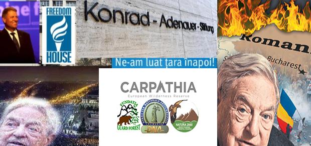Conservation Carpathia Cu zece luni […]
