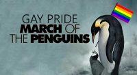 Pinguini de dragul pinguinilor Povesteapuiului de pinguin Gentoo de gen […]