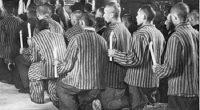 Prima Înviere petrecută în închisoare a fost aceea din 1948. Eram la izolare într-o celulă de la etajul 3 […]
