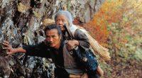 Există un film japonez pe care ar trebui să-l vedem sau să-l revedem în această perioadă de epidemie. Titlul, […]