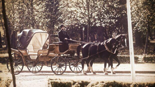 1958, Brad. În drum spre gară plecam dimineața devreme cu trăsura. Caii mergeau încet zgâriind ușor asfaltul când trăsura […]